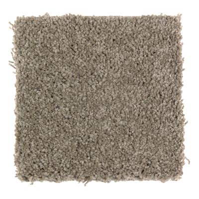 Easy Option in Fallen Timber - Carpet by Mohawk Flooring