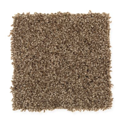 Honest Assurance in 04 - Carpet by Mohawk Flooring