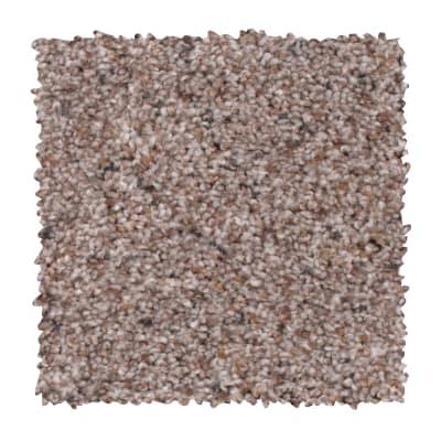 Earthly Details I in Rocky Ridge - Carpet by Mohawk Flooring