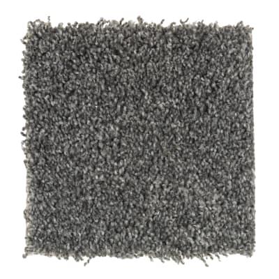 Fabric Of Life in Ebony Field - Carpet by Mohawk Flooring