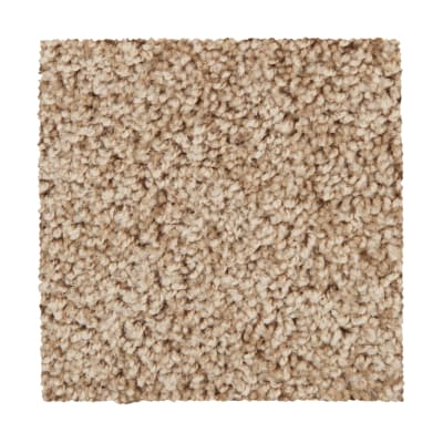 Traditional Allure in Apple Butter - Carpet by Mohawk Flooring