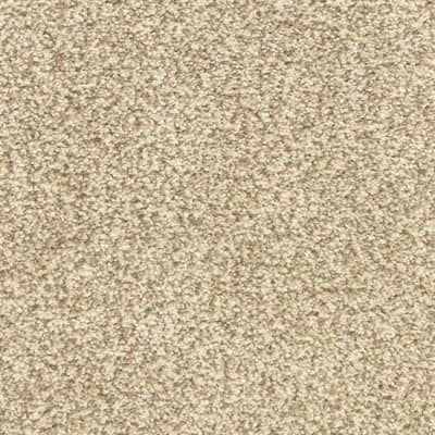 Dawn's Delight in Acorn - Carpet by The Dixie Group