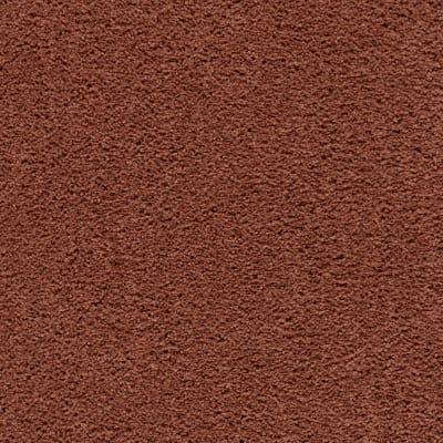 Calming Retreat in Warm Autumn - Carpet by Mohawk Flooring