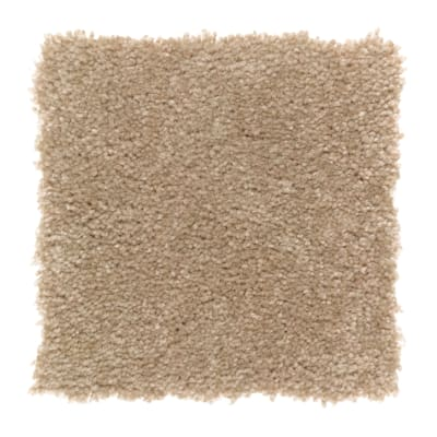 Clever Fashion I in Spiced Tea - Carpet by Mohawk Flooring