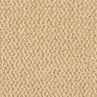 Hideaway in Colony - Carpet by The Dixie Group