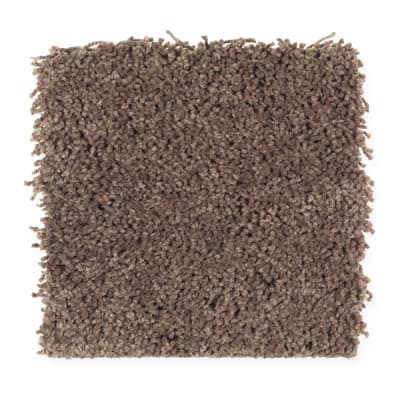 Emerging Image II in Cigar Leaf - Carpet by Mohawk Flooring