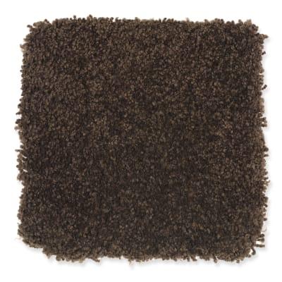 Beach Club IV in Black Walnut - Carpet by Mohawk Flooring