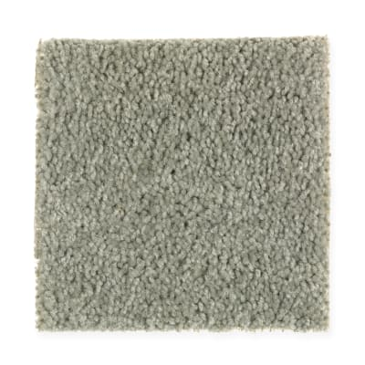 Comfort Zone in Envious - Carpet by Mohawk Flooring