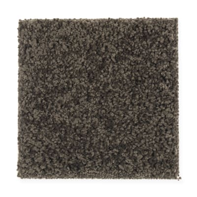 Artful Eye in Dark Forest - Carpet by Mohawk Flooring