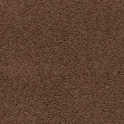 Awaited Bliss in Burnished Brown - Carpet by Mohawk Flooring