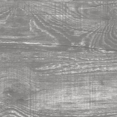 Beach Wood in Erie - Tile by Emser Tile