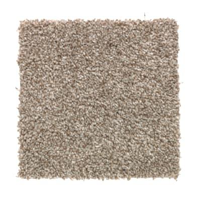 True Harmony in Dakota - Carpet by Mohawk Flooring