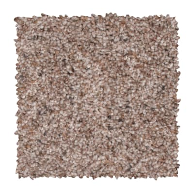 Earthly Details I in Beige Twill - Carpet by Mohawk Flooring