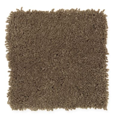Favorite Color in Brown Thrasher - Carpet by Mohawk Flooring