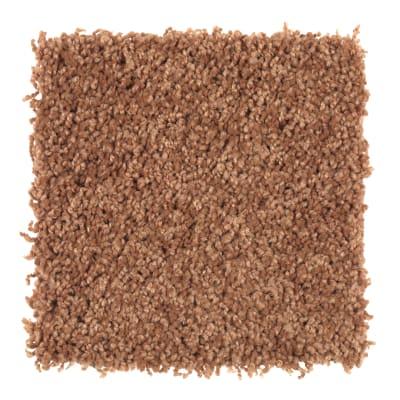 Smart Color in Sweet Potato - Carpet by Mohawk Flooring