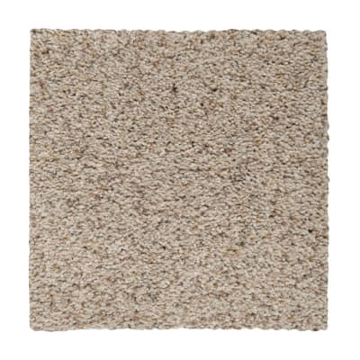Calming State in Shaded Earth - Carpet by Mohawk Flooring