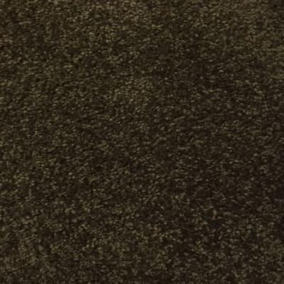 Coastal Path II in Black Walnut - Carpet by Mohawk Flooring