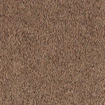 Heavenly Shores in Koala - Carpet by Mohawk Flooring