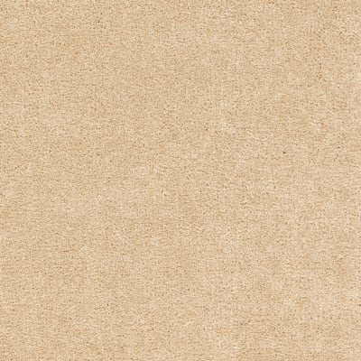 Lively Intuition in Autumn Ash - Carpet by Mohawk Flooring