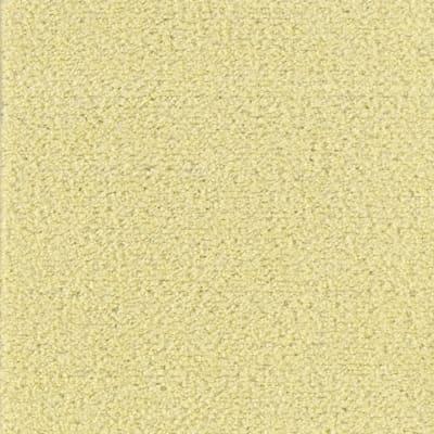 Salsa in Lemon Zest - Carpet by Mohawk Flooring