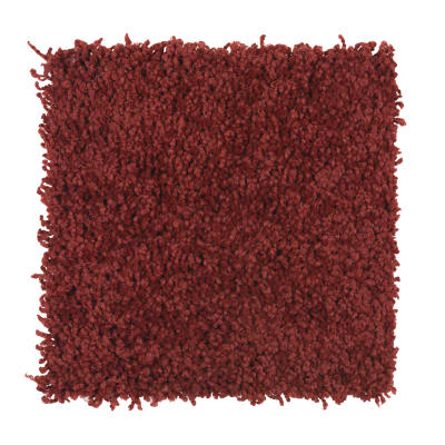 Posh Origins in Ladybug - Carpet by Mohawk Flooring