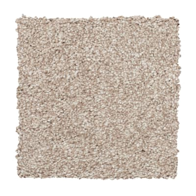 Soft Form I in Rustic Villa - Carpet by Mohawk Flooring