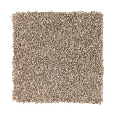 True Harmony in Americana - Carpet by Mohawk Flooring