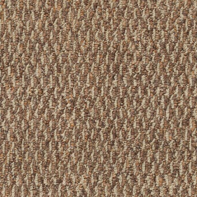 New Spin in Clay Bake - Carpet by Mohawk Flooring