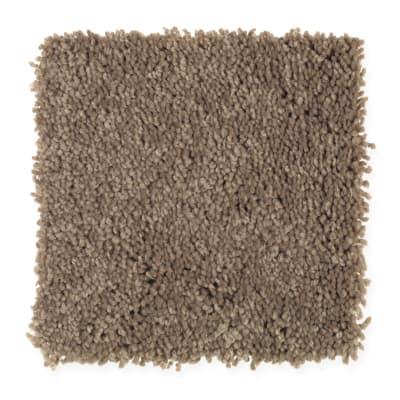 Favorite Color in Dakota - Carpet by Mohawk Flooring