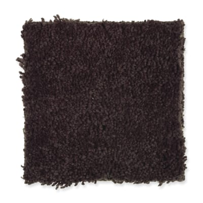 Inspiring Color in Coffee Bean - Carpet by Mohawk Flooring