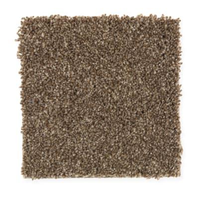Harmony in Willow Bark - Carpet by Mohawk Flooring