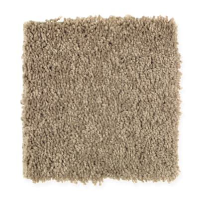 American Legacy in Soapstone - Carpet by Mohawk Flooring
