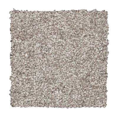 Soft Interest II in Tree Bark - Carpet by Mohawk Flooring