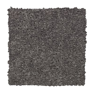 Treasure Valley in Highgate - Carpet by Mohawk Flooring
