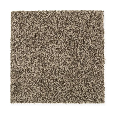 Design Therapy in Dried Moss - Carpet by Mohawk Flooring