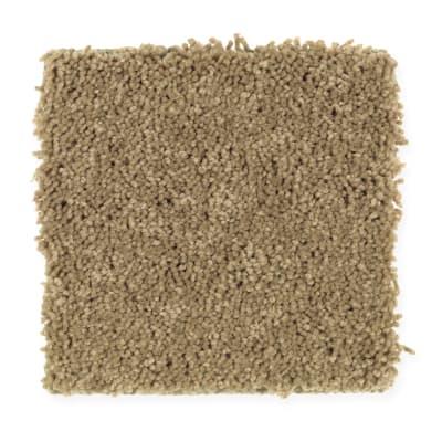 Manchester Gardens in Strudel - Carpet by Mohawk Flooring