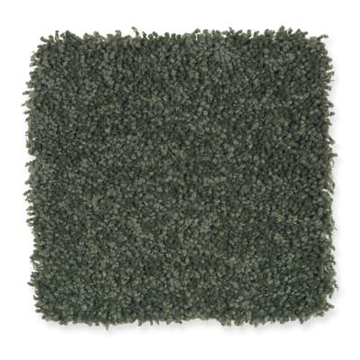 Bellevue Terrace in New Garden - Carpet by Mohawk Flooring