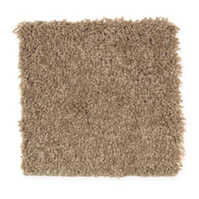 Bellevue Terrace in Acorn Cap - Carpet by Mohawk Flooring
