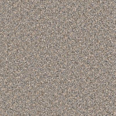 Broadcast Plus in Field Slate - Carpet by Engineered Floors