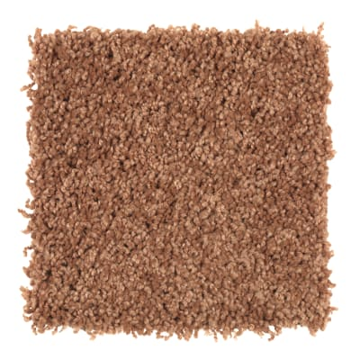 Artful Eye in Autumn Harvest - Carpet by Mohawk Flooring