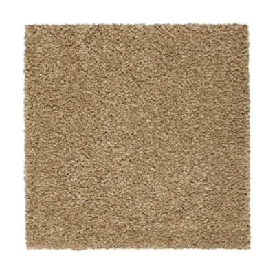 Pure Comfort in Tortoise Comb - Carpet by Mohawk Flooring