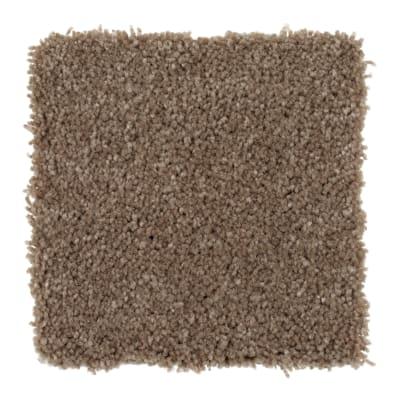 Cheerful View in Safari - Carpet by Mohawk Flooring