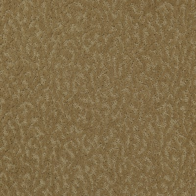 Exceptional Beauty in Sahara Sands - Carpet by Mohawk Flooring