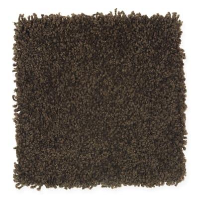Scenic Shoreline III in Black Walnut - Carpet by Mohawk Flooring