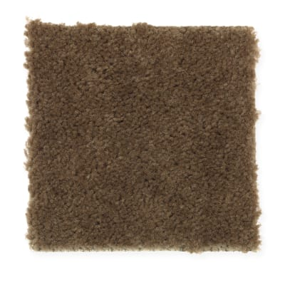 Everyday Living in Burnished Brown - Carpet by Mohawk Flooring