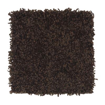 Posh Origins in Hot Fudge - Carpet by Mohawk Flooring