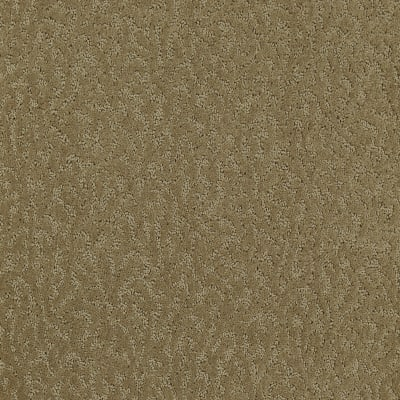 Exceptional Beauty in Light Maple - Carpet by Mohawk Flooring