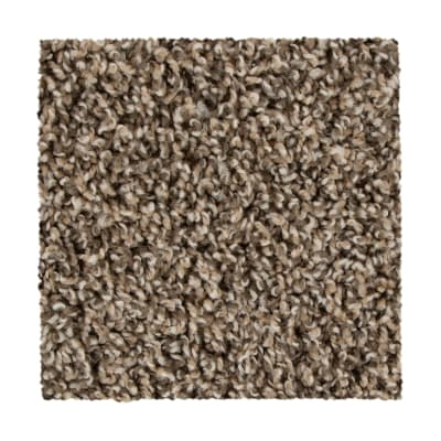 Medalist in Bridle - Carpet by Mohawk Flooring