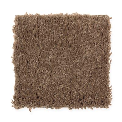 Beautiful Idea II in Acorn Trail - Carpet by Mohawk Flooring