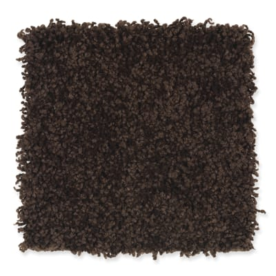 Smart Color in Hot Fudge - Carpet by Mohawk Flooring